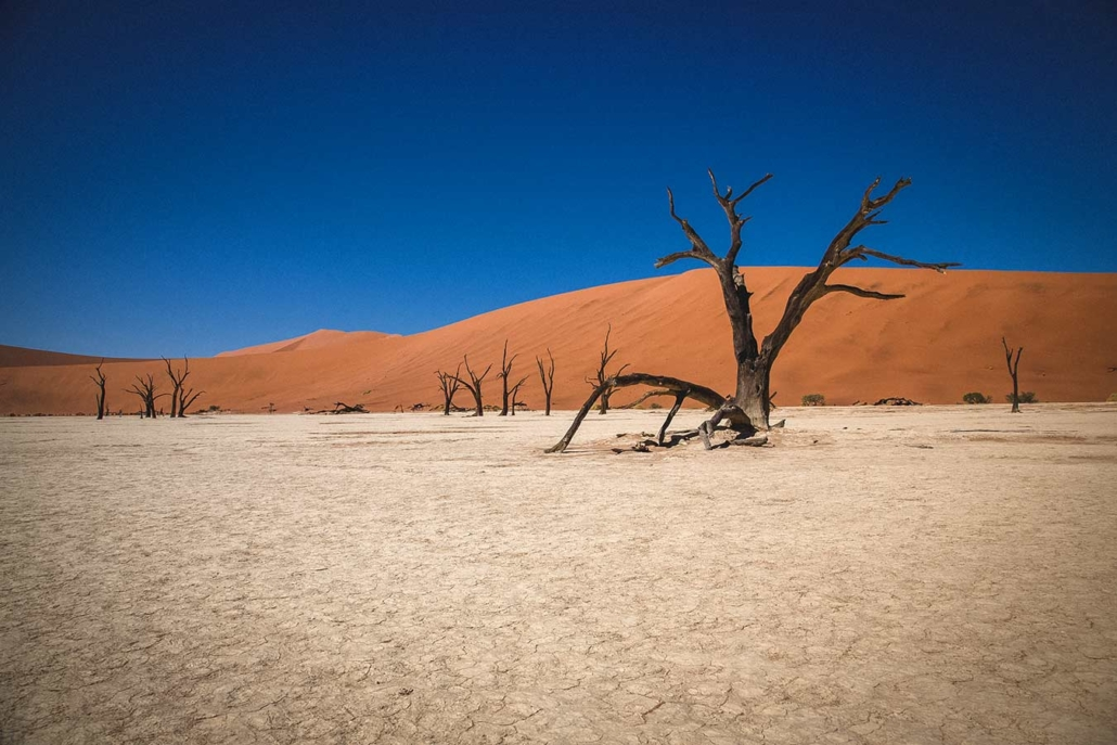 Reisefoto Afrika Namibia