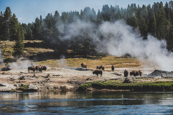 USA Yellowstone Nationalpark Reisefotografie