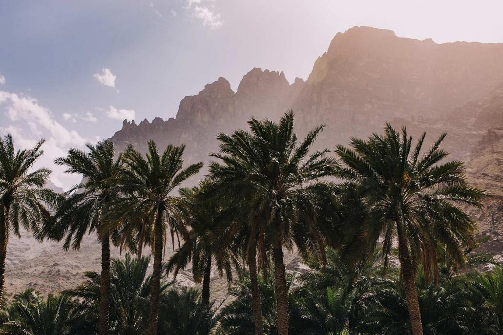 Wadi Palmen